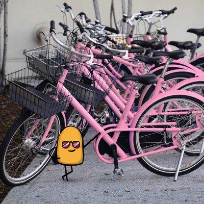 Bikespink2